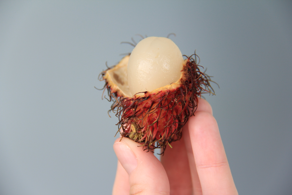 fruits of Vietnam rambutan
