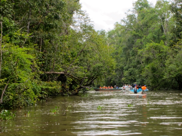 tourists on the Kinabatangan River