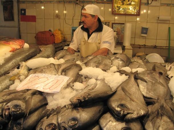 Fishmonger at Mercado Central